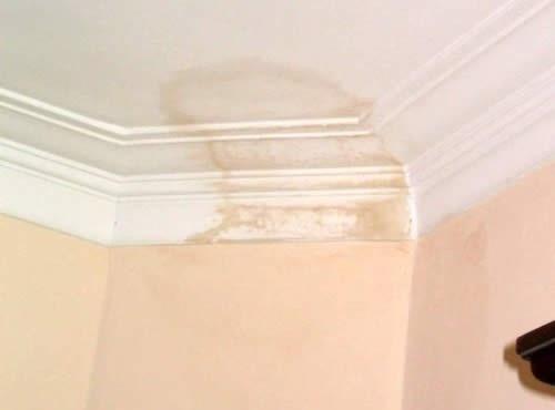 C mo quitar manchas de humedad en el cielo raso - Quitar manchas humedad pared ...
