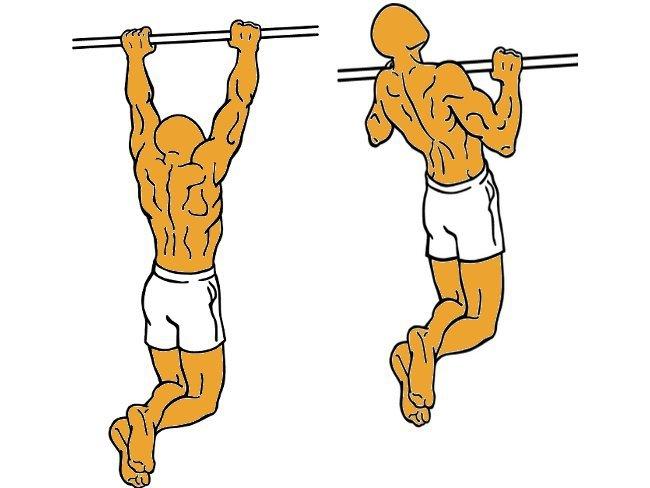 C mo empezar a hacer dominadas tracci n en barra fija - Barras de ejercicio para casa ...